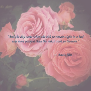 anquotewithrosephoto